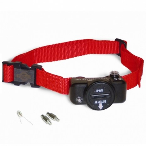 collier-anti-fugue-petsafe-pig19-10764